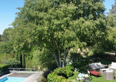 BND-piscine-jardin-7