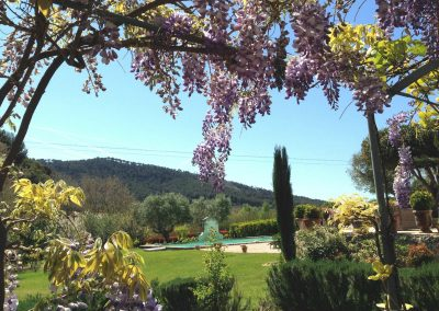 Bastide Fontvieille 2 jardin BD