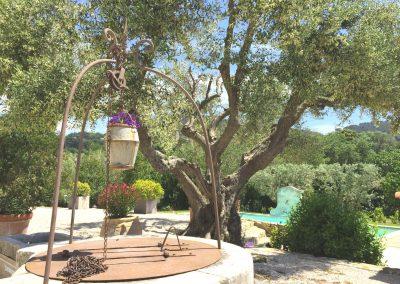 Bastide Fontvieille 8 jardin BD